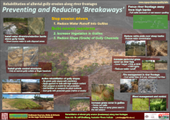 Preventing and Reducing 'Breakaways: Rehabilitation of alluvial gully erosion along river frontages